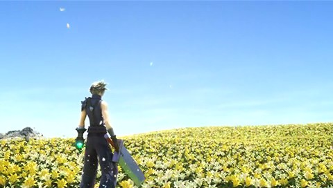 Cloud and the Flowers.jpg