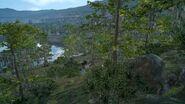 Лес на берегу Весперпула ФФ15