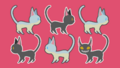 EoT - Cards - Cats Series