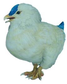 Chickatrice (Final Fantasy XV)