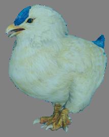 Цыпалиск (Final Fantasy XV)