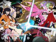 Final Fantasy Unlimited ADV wallpaper 4