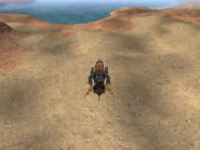FFIX Desert Palace WM