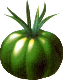 Sylkis Greens