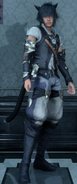 Glamour Prism Miqote attire for Noctis from FFXV