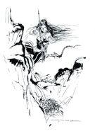 FFII Novelisation Amano Illustration 2