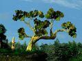Unused FFIX Tree Test Roozbeh 3