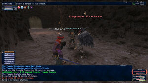 FFXI Battle.jpg