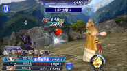 DFFOO Rosa HP Attack