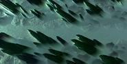Whirlwind maze