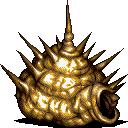 Angler Whelk