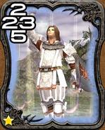 220a Paladin
