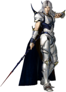 DFF2015 Cecil Paladin 2nd Form