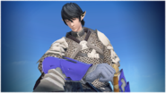 FFXIV TFDW Young Aymeric