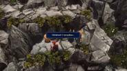 WoFF Hidden Dungeon Remedy+
