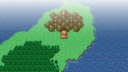 Matoya's Cave - WM.png