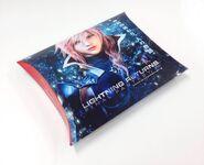 LR Pillow Case