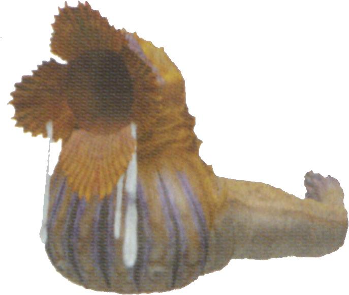 Sand Worm (Final Fantasy X-2)