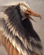 Dive Talon