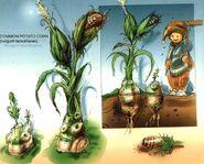 Dali-Corn-Artwork