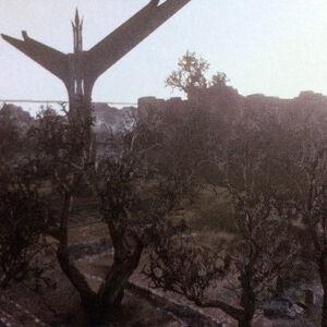 LRFFXIII Artwork - Forsaken Graveyard.jpg