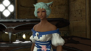 FFXIV Loonh Gah Private Cloth