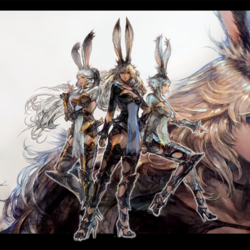 Playable races in Final Fantasy XIV