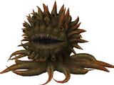 Molboro (Final Fantasy X)