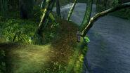 Kilika woods2