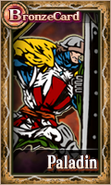 Knightsofthecrystals-PaladinMale