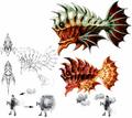Piranha-artwork-ffx