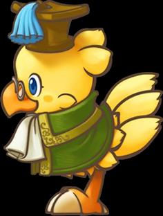 Scholar (Chocobo's Dungeon)