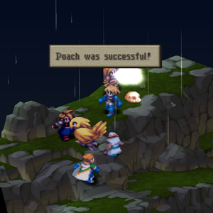 FFT Poach.png