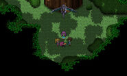 Lenna at Guardian Tree