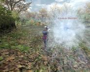FFXI Water Bomb