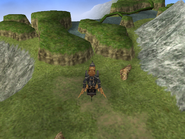 FFIX Pinnacle Rocks WM