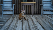 Daves dog from FFXV