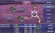 FF Dimensions Guard
