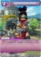Ninja Explorers TCG