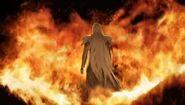 VIICC Sephiroth Flames