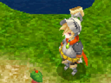 Gnome (race)