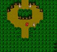 FF3Chocobo Forest