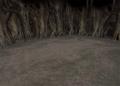 CleyraTrunk1-ffix-battlebg