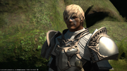 FFXIV Arenvald 4 1.png