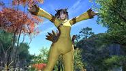 FFXIV Chocobo Suit