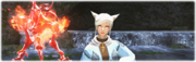 Summoner 30-50 banner image from Final Fantasy XIV.png