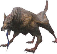 Canis Major ffx-2