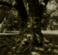 FFT Sound Novel Image 05