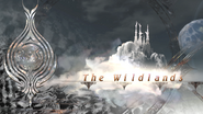 Wildlands-Logo