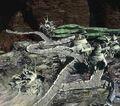 Ancient City FFVII-2